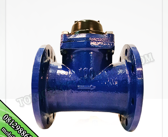 WATER METER AMICO SIZE 4 INCH TYPE LXLG DI JAKARTA BARAT